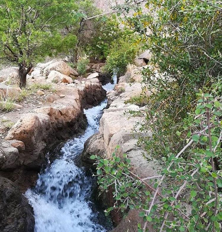 رود آبشار دامگاهان مهریز