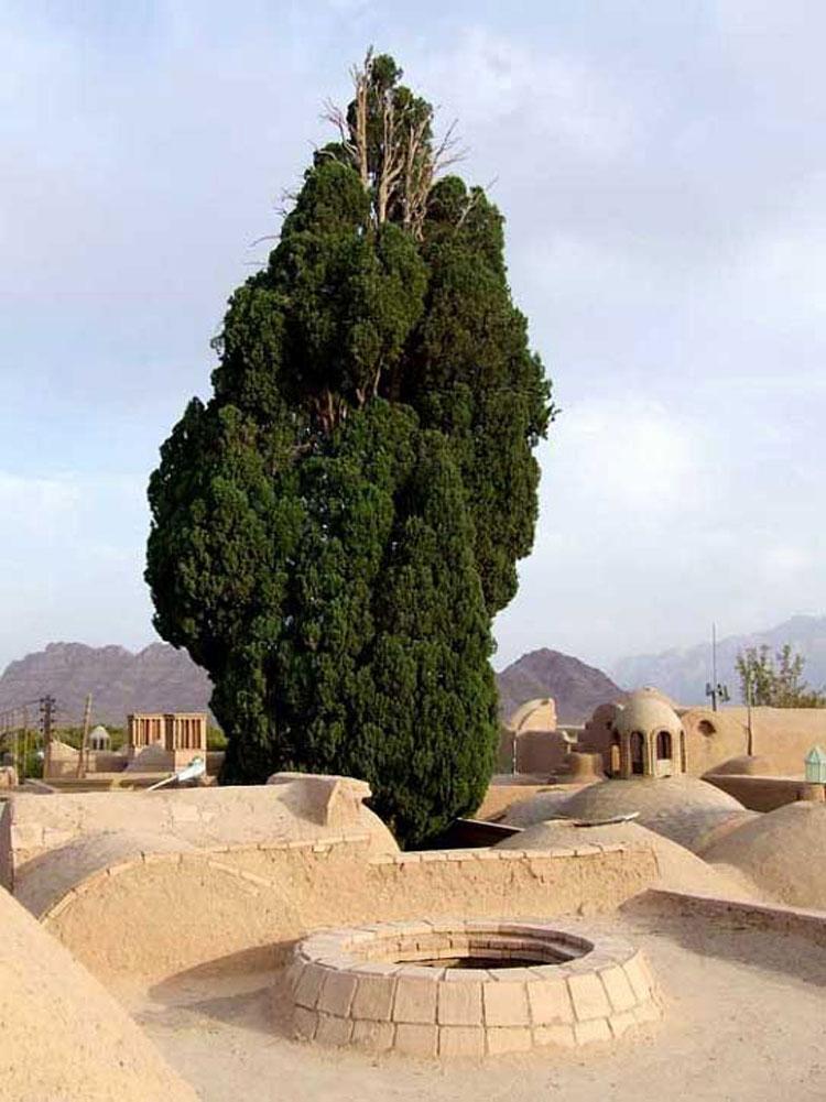 روستای مبارکه تفت