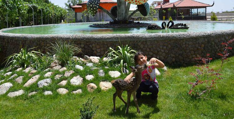 باغ آهو مهریز