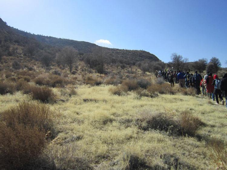 پوشش گیاهی منطقه حفاظت شده باغ شادی یزد