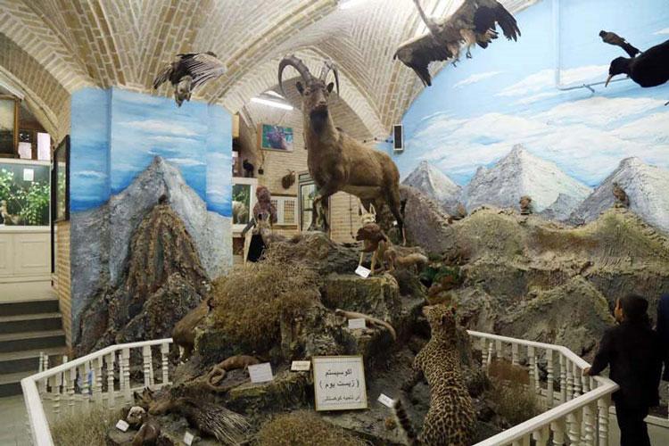 موزه علوم طبیعی یزد