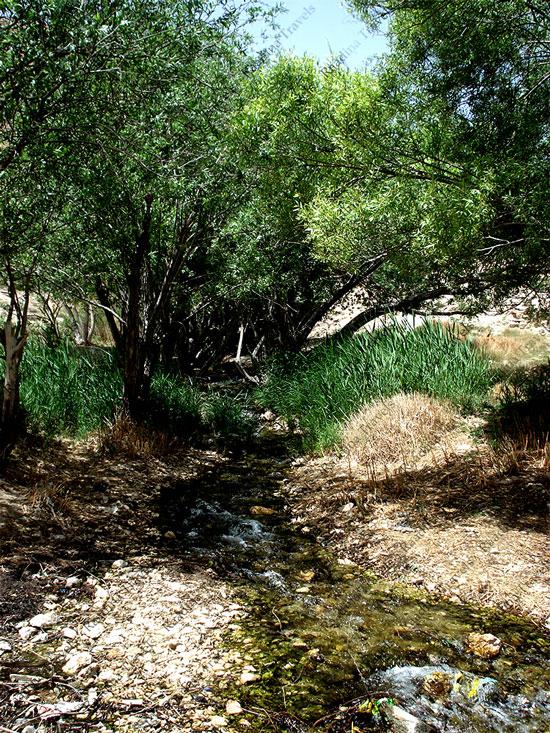 چشمه نهرمسیح خاتم