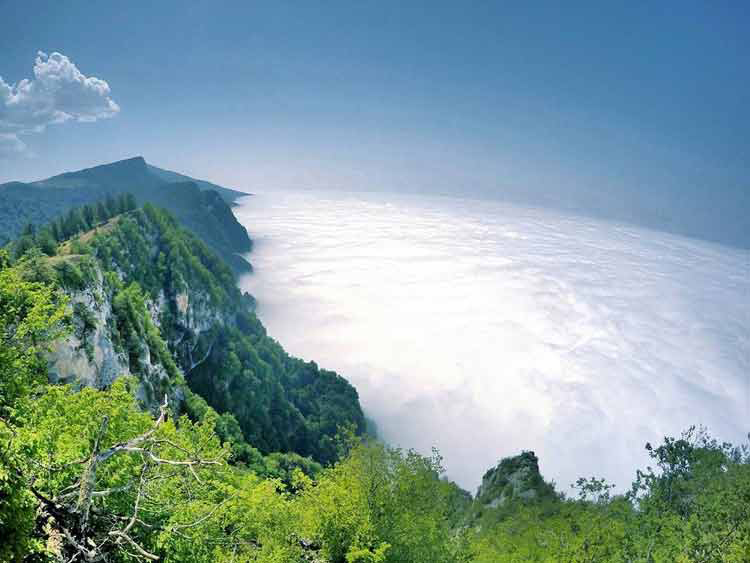 Clouds Forest or Jangal-e Abr