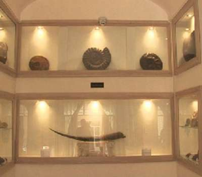 افتتاح موزه تخصصی دیرینه شناسی کامبرین در یزد