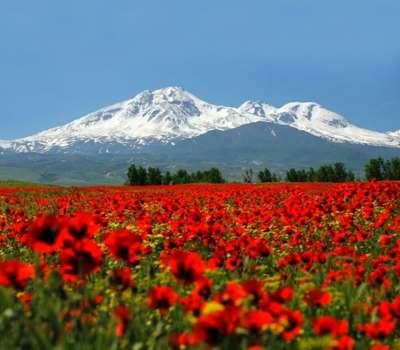 ثبت جهانی شدن کوه سبلان