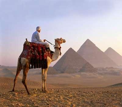 آغاز پروژه جهانگردی دور دنیا با شتر