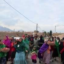 آغاز جشنواره انار در یزد