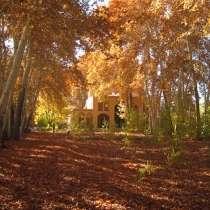 سفر به یزد در پاییز