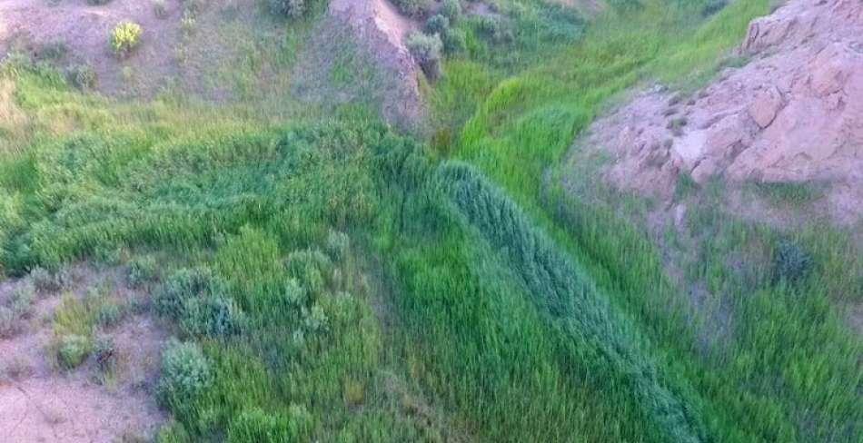 رودخانه شور بهاباد