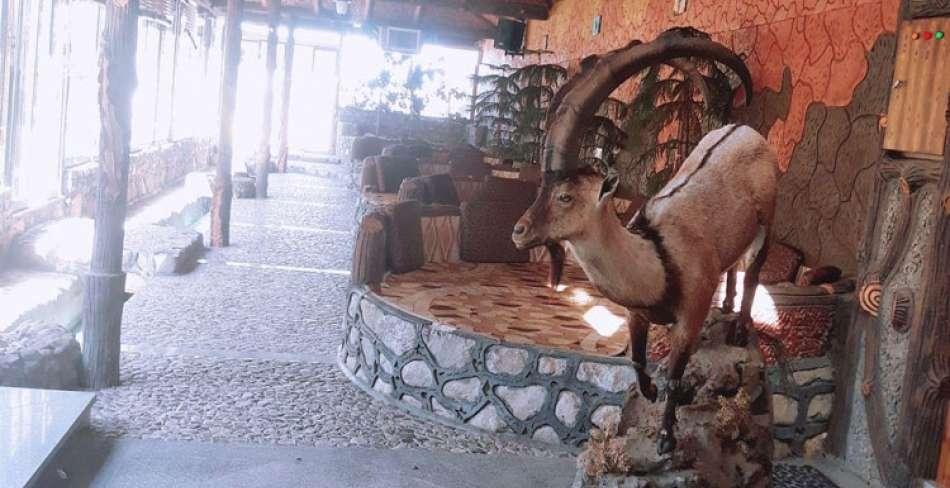 رستوران باغ آهو مهریز