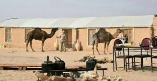 Yazd Desert Tour (Half Day)