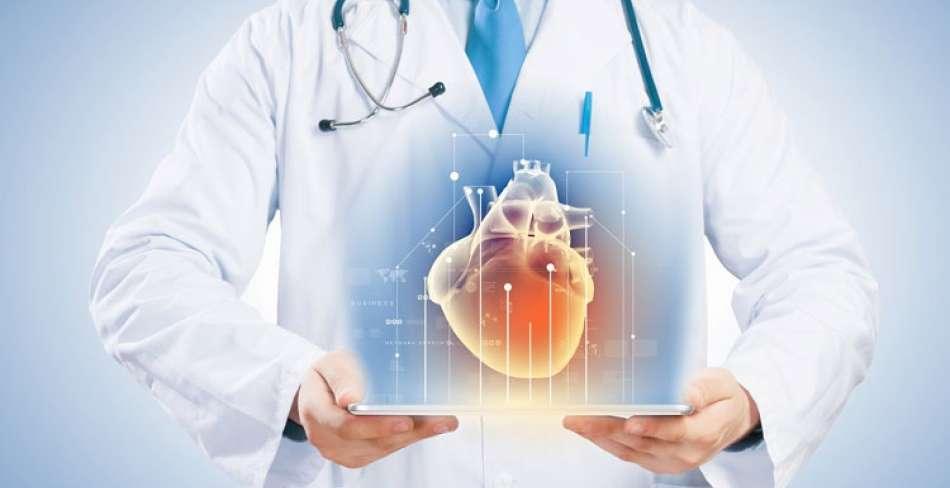 متخصصان قلب و عروق یزد