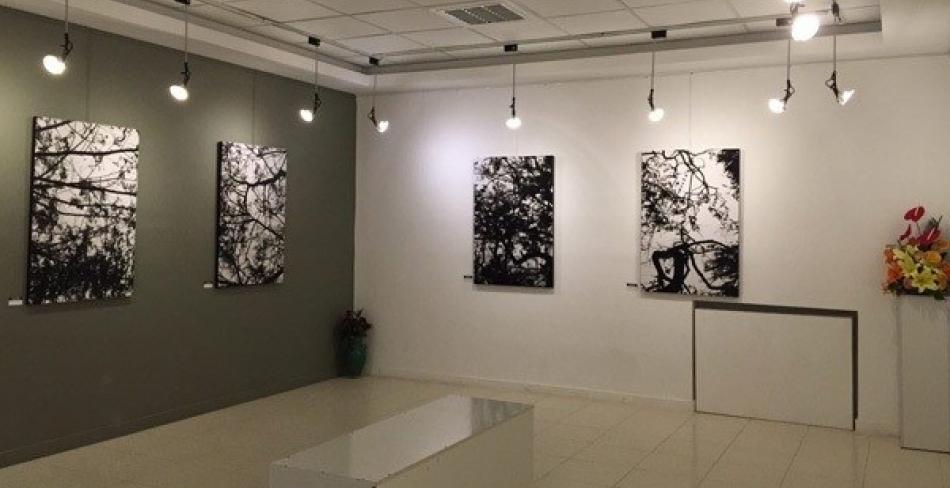 نمایشگاه ها و گالری های یزد